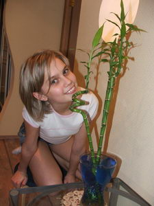 http://media-news.ru/uploads/posts/2008-05/1210664795_dasha_melnikova.jpg