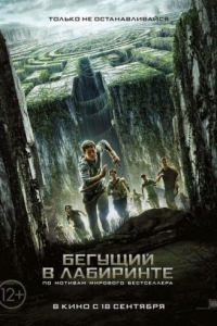 ������ � ������ ������� � ��������� / The Maze Runner (2014)